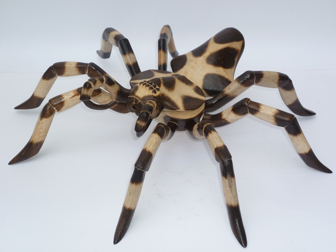Wooden Brown Spotted Spider